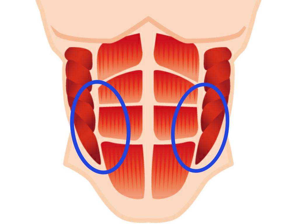 腹直筋離開に対する治療