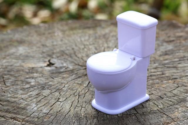 便秘 トイレ